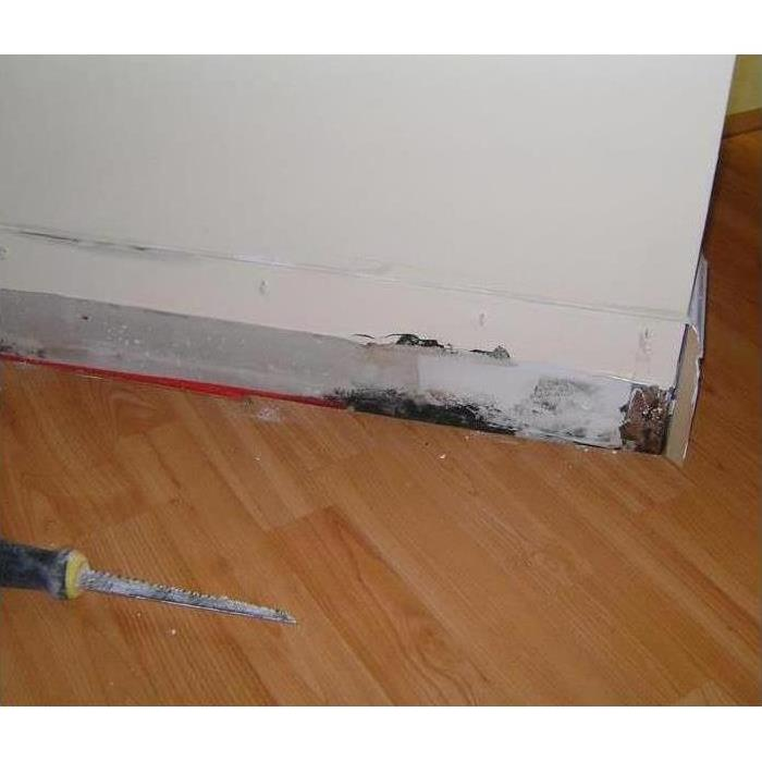 Baseboard black mold damage after water leak incident