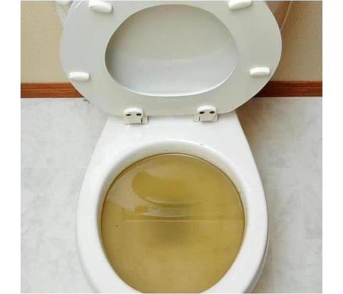 Clogged Toilet in a Commercial Building
