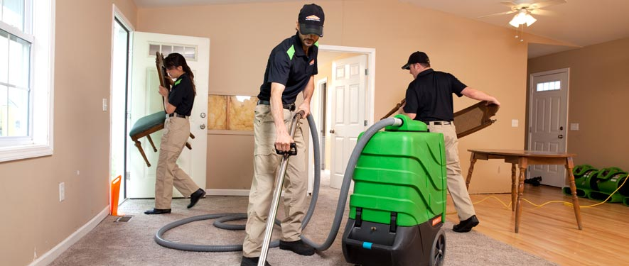 Westchester, FL cleaning services